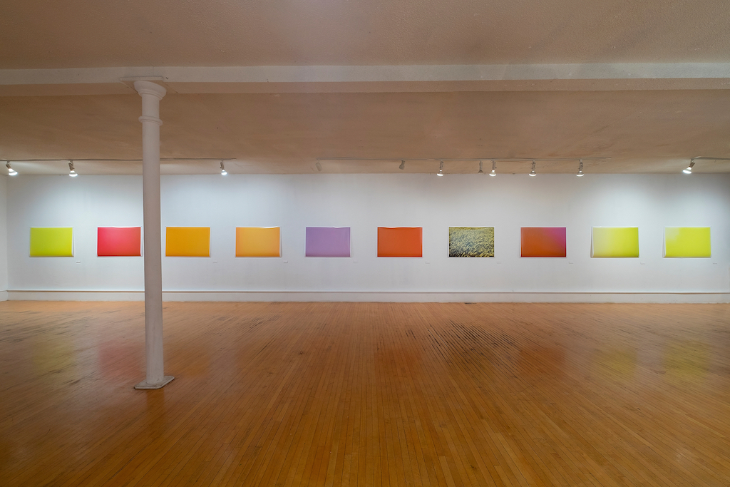 Kendra wallace the field of appearances installation view trianon gallery november 2015