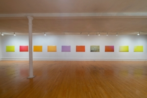 Kendra Wallace, The Field of Appearances, Installation View, Trianon Gallery, November 2015 to January 2016. Courtesy of the artist.